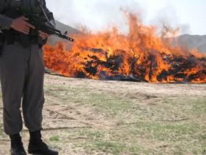 حريق موادمخدر درولايت هيرمند