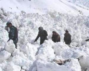 برف باری درولایت فراه